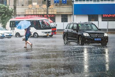 22日这场雨使连续多日的高温有所下降 首席记者 王健 摄