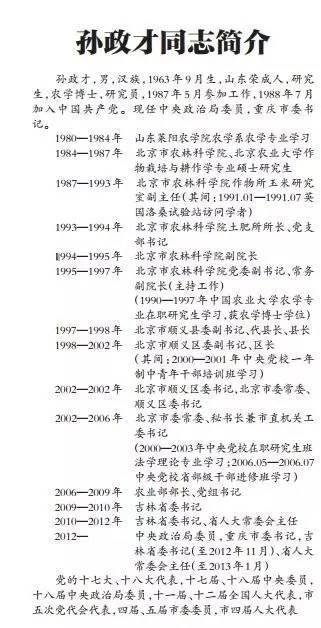 这份简历来自《重庆日报》