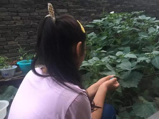 """7月9日,12岁的何佳佳看着坐在对面的姑姑何利贤说,""""我撒谎了。""""新京报记者李兴丽 摄"""