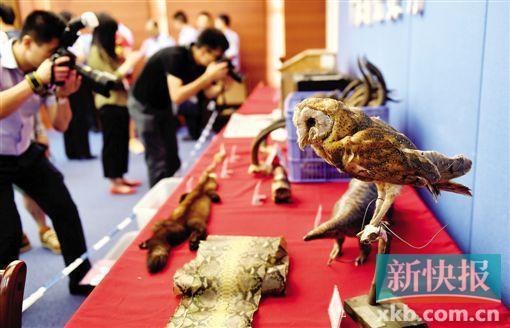 警方展示查获的部分野生动物或标本