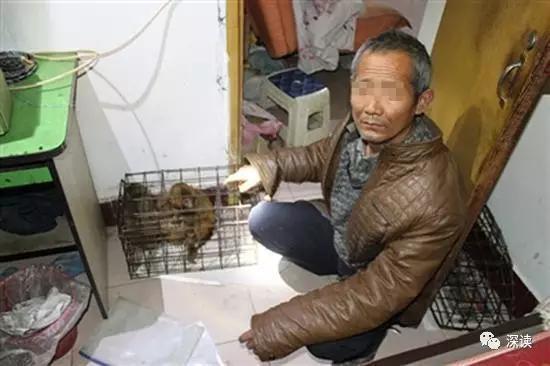 成都森林公安侦破的非法倒卖运输猕猴案,一名新野艺人在指认现场