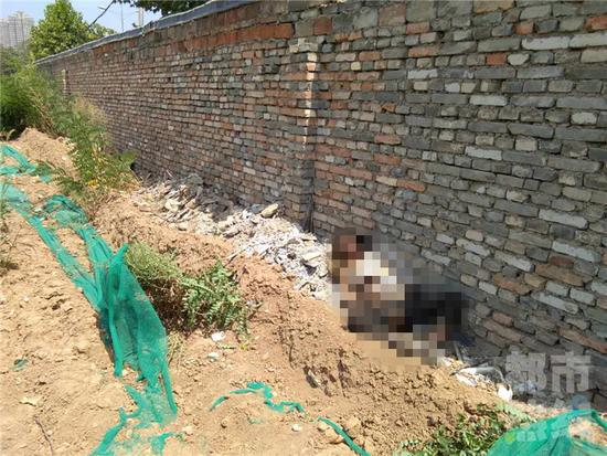 围挡内现女尸 被发现时全身腐烂爬满虫子
