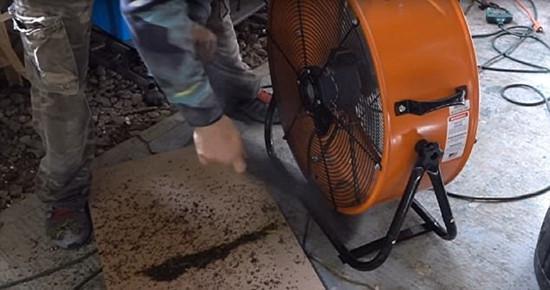 美国男子用一只狗两台风扇 一晚消灭4000只蚊子