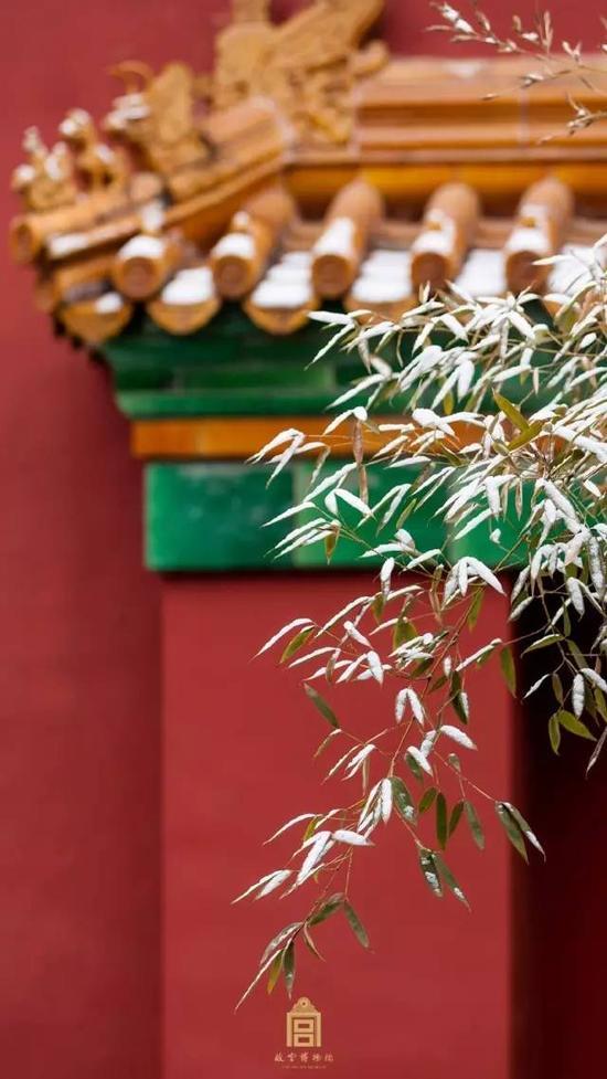 另外据地震所的专家说,其实故宫里的内饰,例如用长铁钩垂吊着的宫灯也有防震效果 。