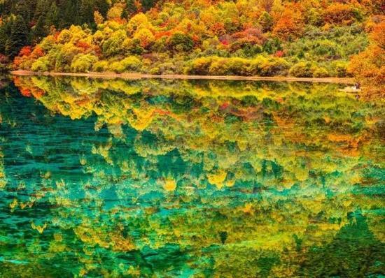 湖底的钙华、藻类、水草、枯木