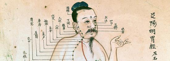 足阳明胃经图(局部)