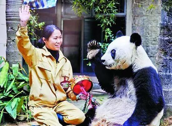 """熊猫""""妈妈""""施飞宁和巴斯合影"""