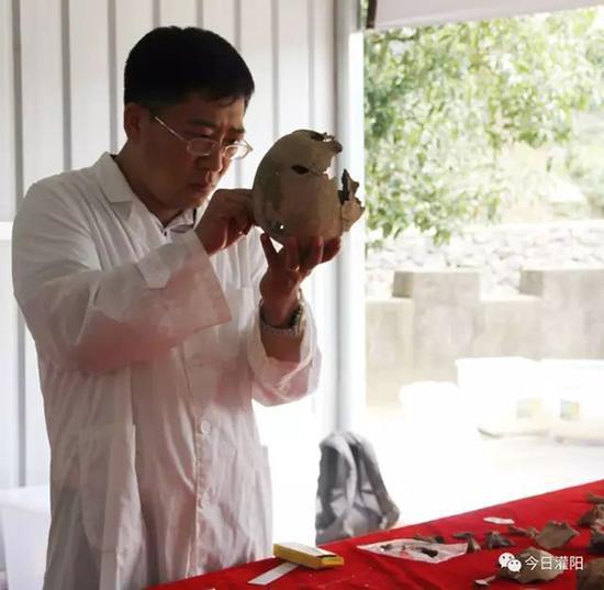 李法军教授正在仔细粘合遗骸头骨。