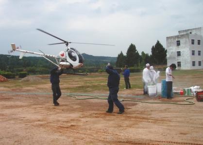 出动直升机为古柏喷洒杀虫药。