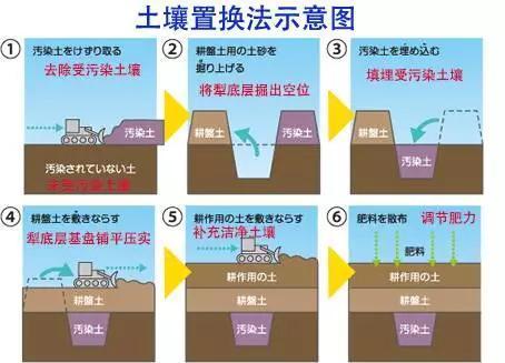 镉稻吸收法则是利用了水稻富集镉元素的特性。