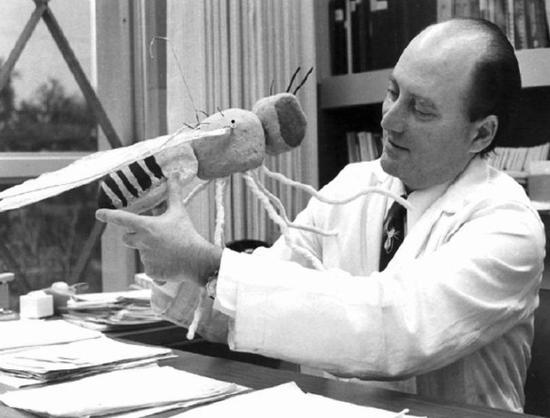 """杰弗理·霍尔、迈克尔·罗斯巴希和迈克尔·杨都在这""""6人名单""""中,都是研究果蝇的。"""
