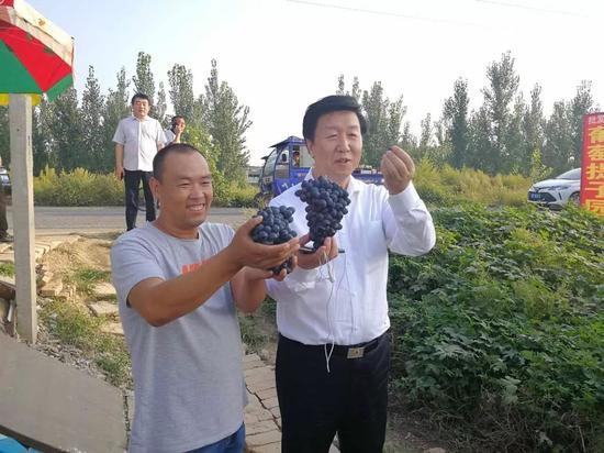 雄安新区党工委副书记、管委会常务副主任刘宝玲深入田间与群众交朋友。