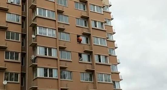 这就叫天降神兵,这样一个帅气的飞身跃下,救回的是一条鲜活的生活,为消防战士点个赞。