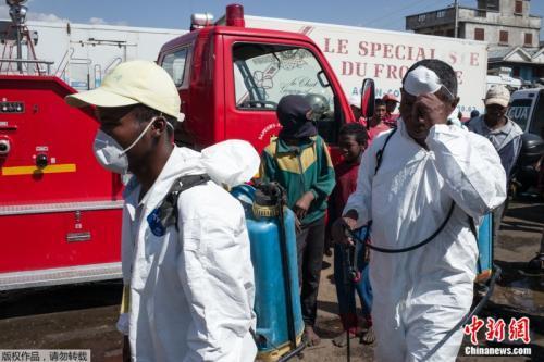 目前,马达加斯加东部及中部疫情最严重,全国学校停课、两所主要大学已被关闭消毒,当局也在数个社区放置捕鼠器及喷洒杀虫剂。