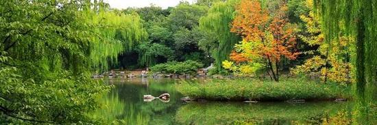 ▲北京大学。图片来自北京大学官网