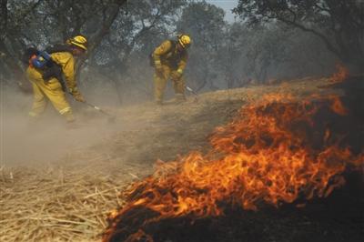 当地时间10月14日,美国加利福尼亚州北部发生森林大火,消防员正在奋力灭火。图/视觉中国