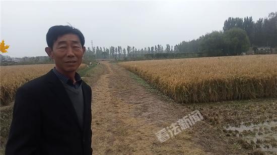 摄/法制晚报·看法新闻记者 杨小嘉