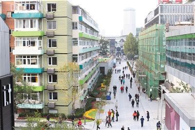 三里屯南42号楼整治后的样貌,楼下增添绿化。 本版摄影/新京报记者 王飞