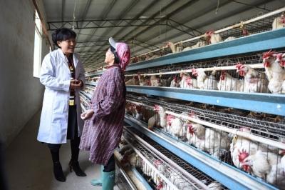 10月29日,贵州省盘州市淤泥乡岩博村村支书余留芬代表(左)在岩博村的养殖场向职工宣讲十九年夜精力。新华社发