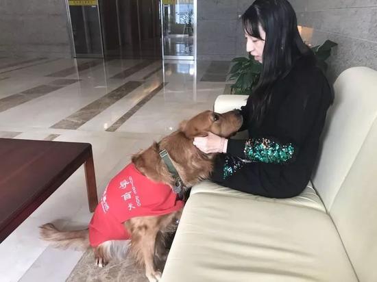 徐清和她的导盲犬呆萌。新京报记者王佳慧 摄