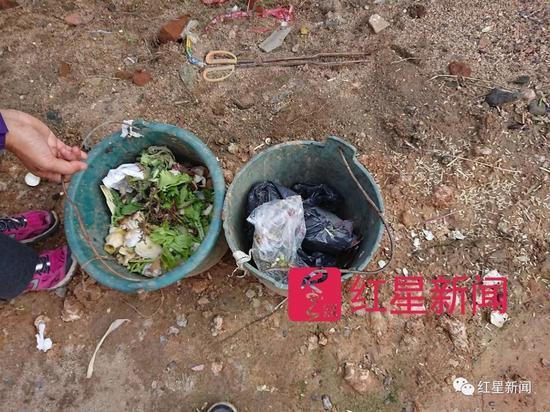 ▲村里每家的垃圾被要求分为可沤和不可沤两个桶 图片来源:红星新闻