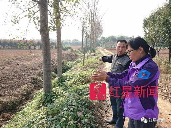 ▲村委副书记陶付才领着陈立雯看准备设为堆肥场的土地 图片来源:红星新闻