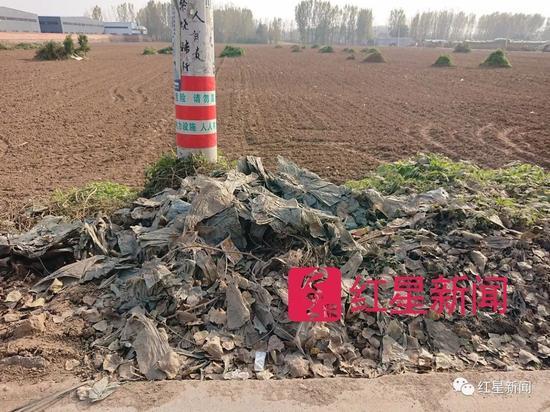 ▲村里,路边上的垃圾 图片来源:红星新闻