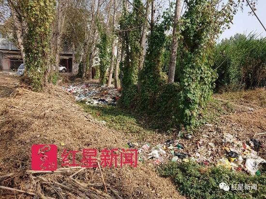 ▲村后的垃圾沟 图片来源:红星新闻