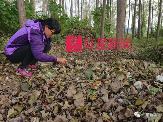 """▲陈立雯继续做着她的""""垃圾梦"""" 图片来源:红星新闻"""