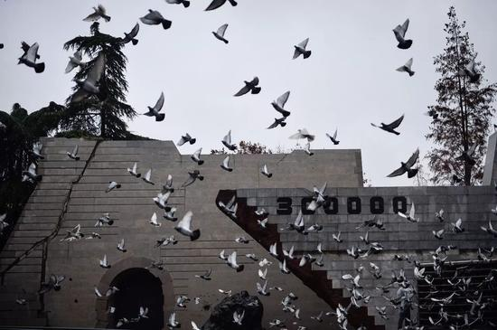 2016年12月13日,南京大屠杀死难者国家公祭仪式上放飞宁静鸽。新华社记者 李响 摄