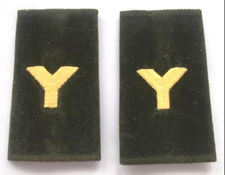 """预备役士兵套式肩章大写的字母""""Y""""。"""