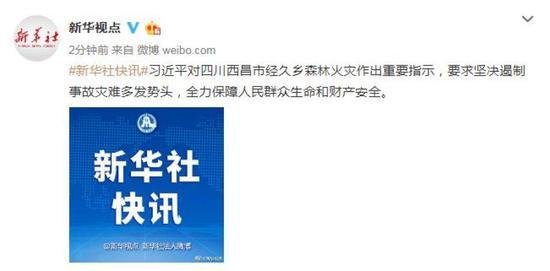 习近平对四川西昌市森林火灾作出重要指示图片