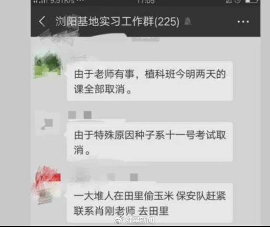 7k小说科研玉米被偷摘:镇政府介入 村民已归还近百个