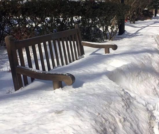 芝加哥室外的一把椅子完全被大雪覆盖。叶新筠 摄