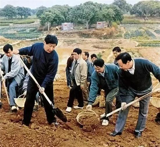 △1995年习近平在闽江下游劳作