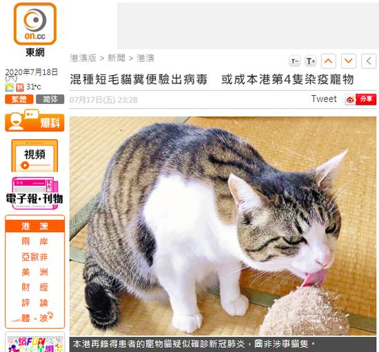 【杏悦】粪便验出新冠病毒或是香港第4杏悦只染疫宠图片
