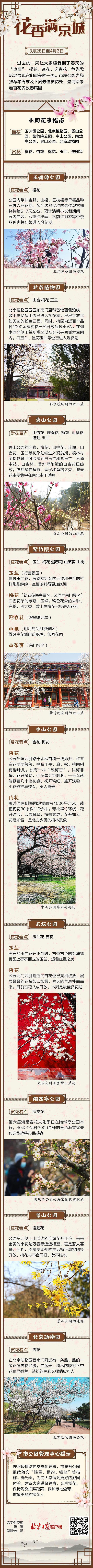 百花齐放春满园!下周北京公园最佳赏花地一图尽览图片