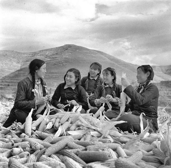 申纪兰(左)和妇女们在一起劳动
