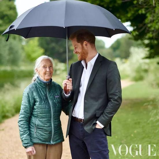 英国哈里王子:出于环保考虑 最多只会要两个孩子|哈里王子|环保