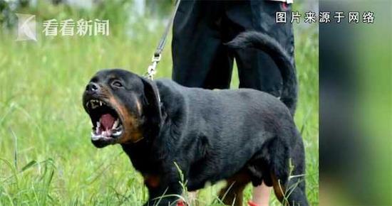 """鼎丰彩票投注 真糟心!无锡一公交站台被垃圾""""包围"""" 乘客上下车无处下脚"""