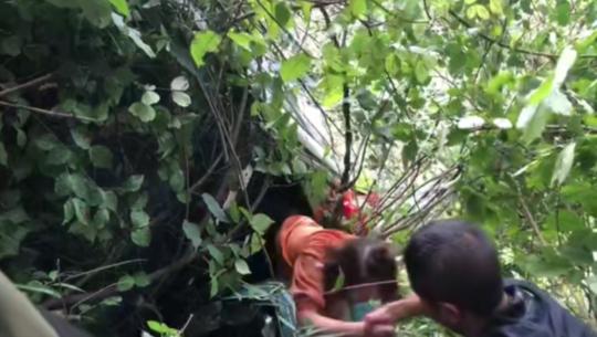 四川广元一越野车坠落40米悬崖 车上两人仅受轻伤