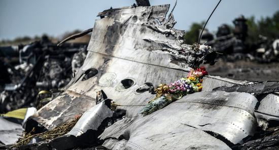 MH17航班坠毁现场。(图片来源:俄罗斯卫星网)