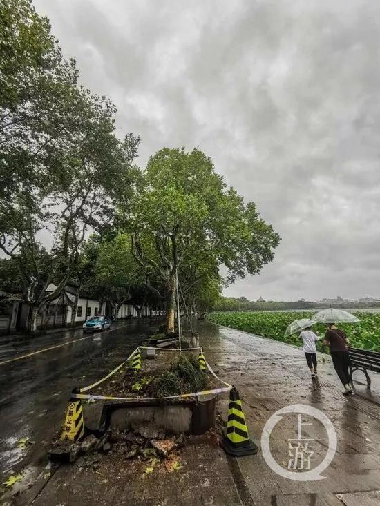 利奇马致浙江28人死亡 一老人因家中被淹轻生获救|浙江
