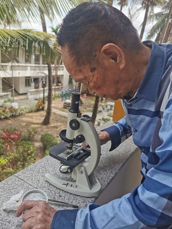 袁隆平在视察稻种。湖南杂交水稻研究中央供图