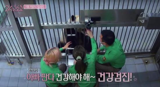 韩国动物园、艺人方回应