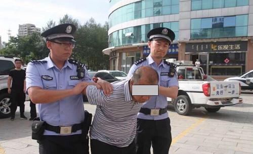 公安机关抓获犯罪嫌疑人李某某。