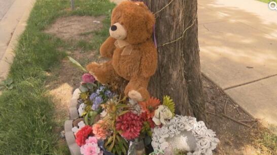 章莹颖失踪后,许多人在她失踪前出现的公交车站放鲜花和熊仔。(图源:美国中文网)