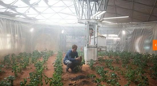 ▲电影《火星救援》剧照。