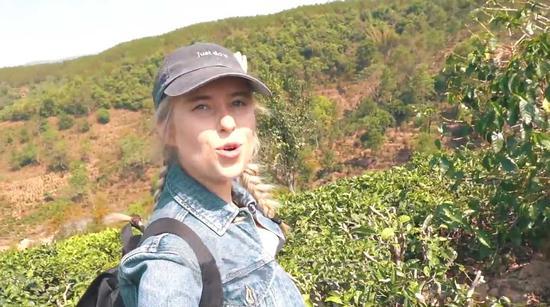 Amy介紹身後是大片的咖啡樹林(視頻截圖)