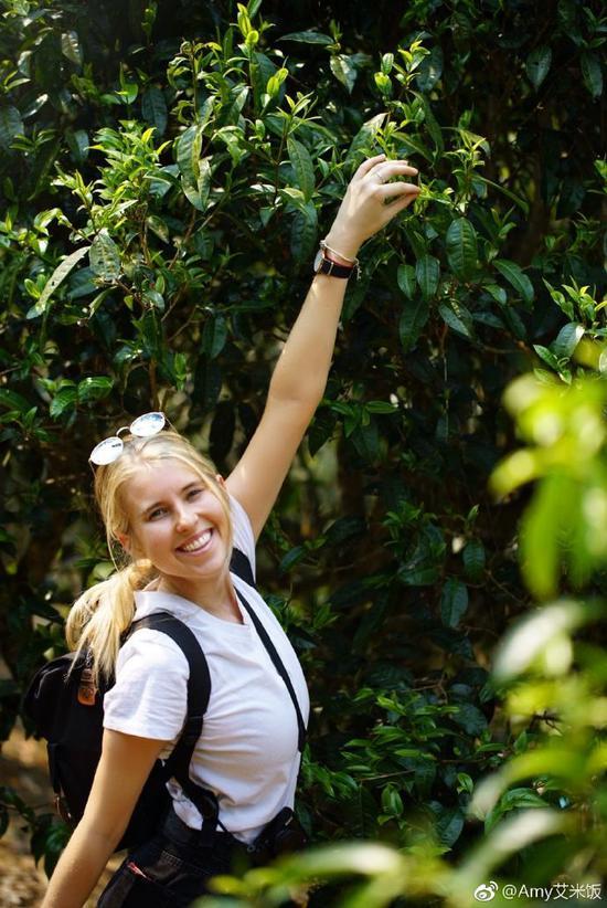 Amy在一棵古樹前(Amy個人微博)